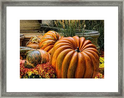 The Great Pumpkin Framed Print by Tammy Espino