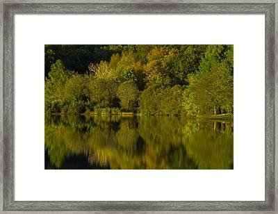 The Greens Of The Park Framed Print by Karol Livote