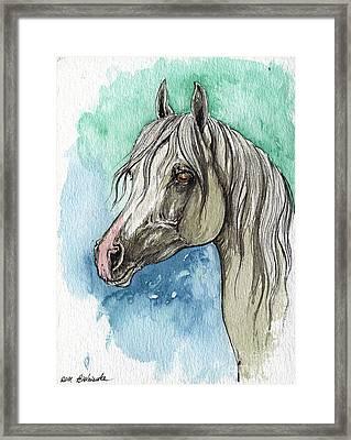 The Grey Arabian Horse 16 Framed Print by Angel  Tarantella