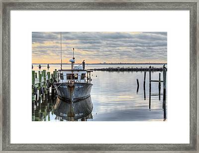 The Gulf Queen Framed Print by JC Findley