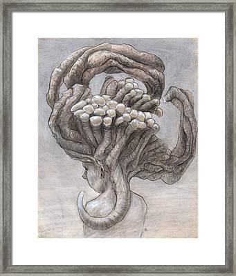 The Hapless Framed Print by Ethan Harris