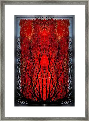 The Heart Of A Tree Framed Print by Jan Amiss Photography