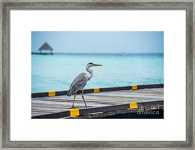 The Hereon Framed Print by Hannes Cmarits