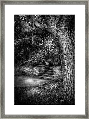 The Hidden Steps 1 Framed Print by Marvin Spates