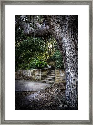 The Hidden Steps 2 Framed Print by Marvin Spates