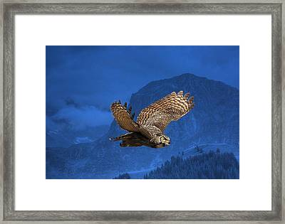 The High Country Framed Print by Donna Kennedy