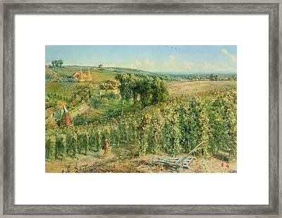 The Hop Garden Framed Print by Cecil Gordon Lawson
