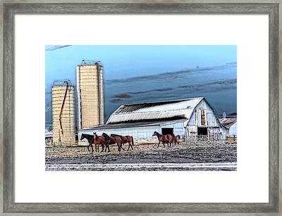 The Horse Barn Framed Print by Cheryl Cencich