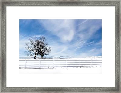 The Hugging Trees Framed Print by Nancy Greindl