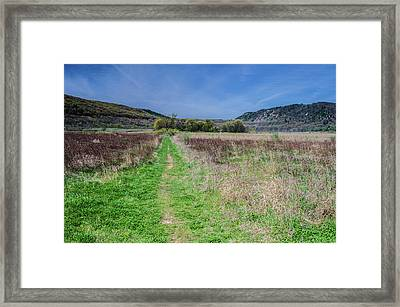The Ice Age Trail Framed Print by Jonah  Anderson