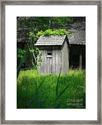 The Ivy League Framed Print by Colleen Kammerer
