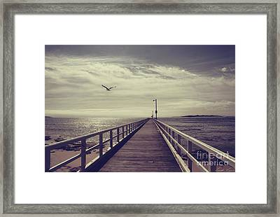 The Jetty Framed Print by Linda Lees