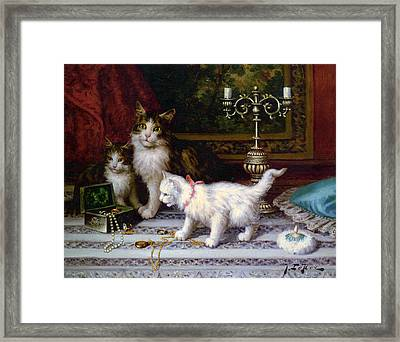 The Jewelry Box Framed Print by Jules Leroy