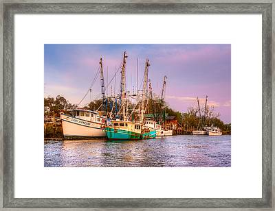 The Lady Vanessa Framed Print by Debra and Dave Vanderlaan