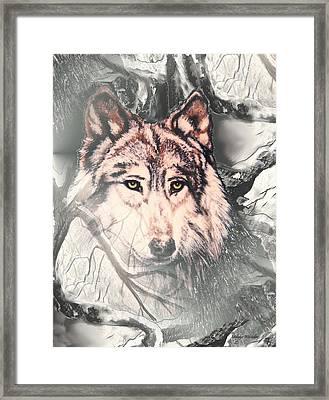 The Lair Framed Print by Melodye Whitaker