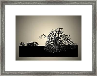 The Last Breath Framed Print by Robert Woodward