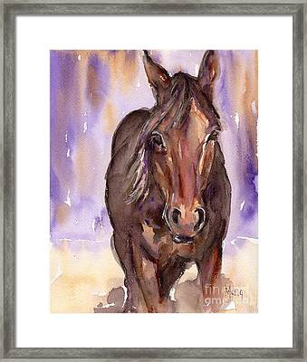 Horse Watercolor Painting The Little Horse Framed Print by Maria's Watercolor