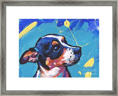 The Little Rattie Framed Print by Lea S