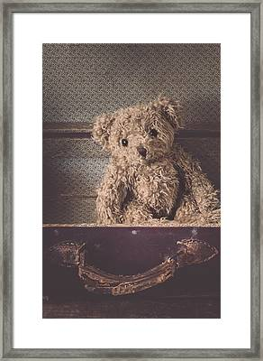 The Little Vagabond Framed Print by Amy Weiss