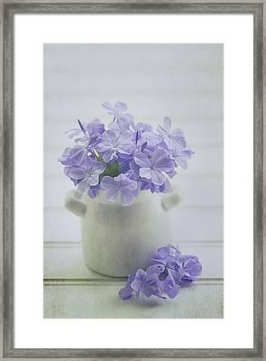 The Little White Pot Framed Print by Kim Hojnacki