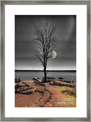 The Lonely Tree Framed Print by Betty LaRue