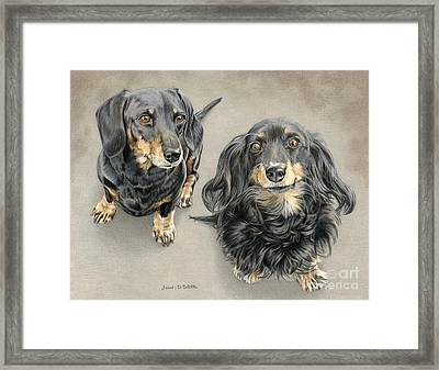 The Long And Short Of It Framed Print by Sarah Batalka