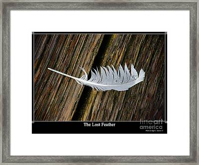 The Lost Feather Framed Print by Tikvah's Hope