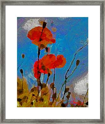 The Lovely Poppies Tnm Framed Print by Vincent DiNovici