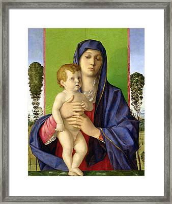 The Madonna Of The Trees Framed Print by Giovanni Bellini