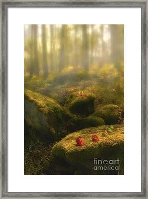 The Magic Forest Framed Print by Veikko Suikkanen