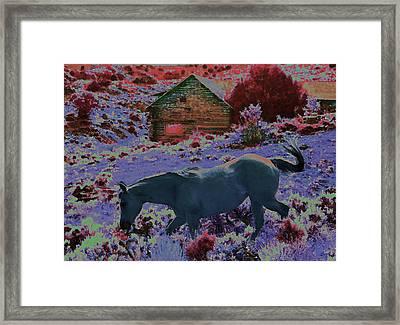 The Magic Of Horse Framed Print by Lenore Senior
