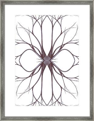 The Magic Of Nature Framed Print by Giuseppe Epifani