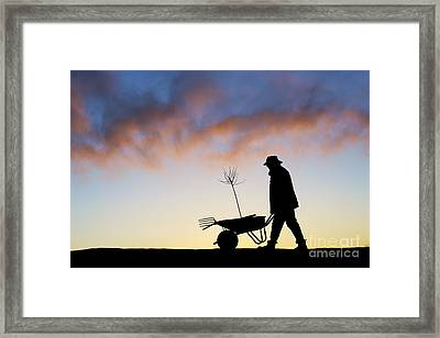The Man Who Plants Trees Framed Print by Tim Gainey