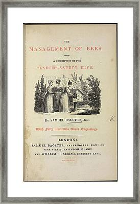 The Management Of Bees Framed Print by British Library