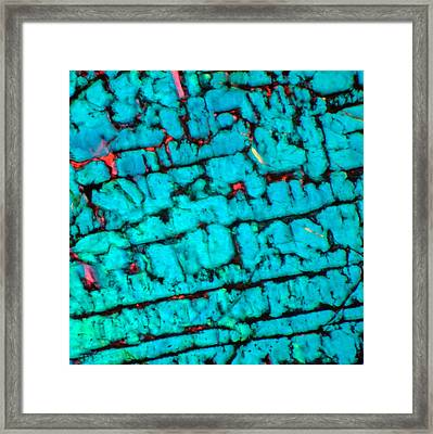 The Maze Framed Print by Tom Phillips