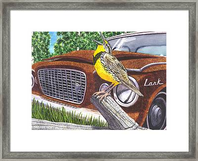 The Meadowlarks Framed Print by Catherine G McElroy