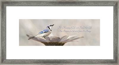 The Meaning Of Life Framed Print by Lori Deiter