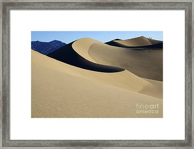 The Mesquite Dunes Of California Framed Print by Bob Christopher