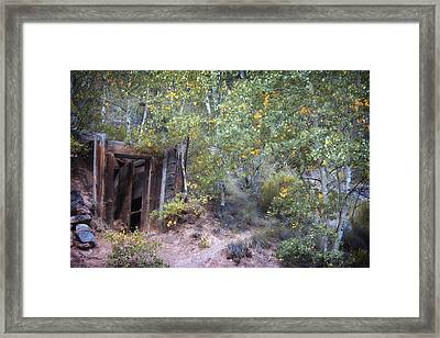 The Mine Shaft Framed Print by Lana Trussell