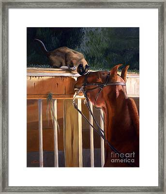 The Morning Buzz Framed Print by Jeanne Newton Schoborg