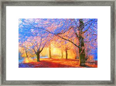 The Morning Light Framed Print by Veikko Suikkanen