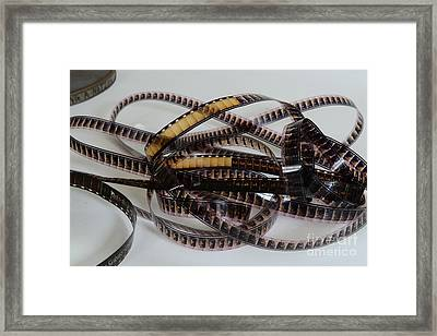 The Movie Buff Framed Print by Paul Ward