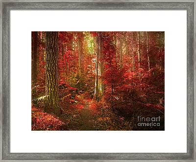 The Mystic Forest Framed Print by Tara Turner