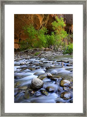 The Narrows A Place To Pause Framed Print by Bob Christopher