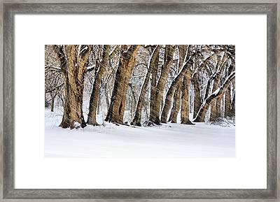 The Noreaster Framed Print by JC Findley