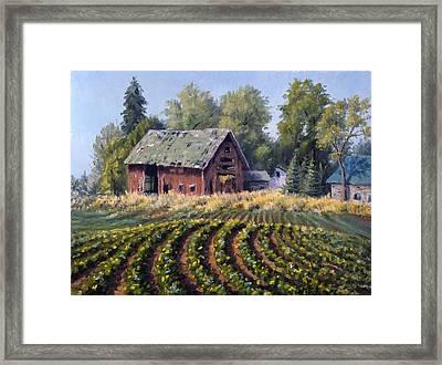 The Old Farmstead Framed Print by Rick Hansen