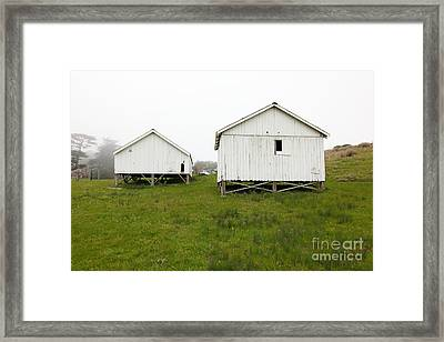 The Old Pierce Point Ranch At Foggy Point Reyes California 5d28140 Framed Print by Wingsdomain Art and Photography