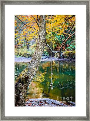 The Old Swimming Hole Framed Print by Edward Fielding