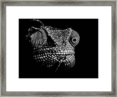 The One Most Adaptable To Change Framed Print by Nathan Cole