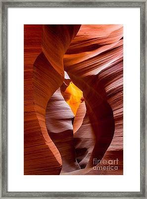 The Opening Framed Print by Inge Johnsson